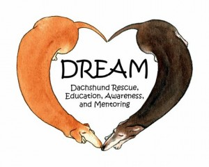 logo_dreamrescue_sized